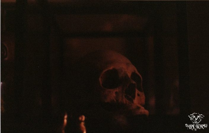 Franky Skull Photograph