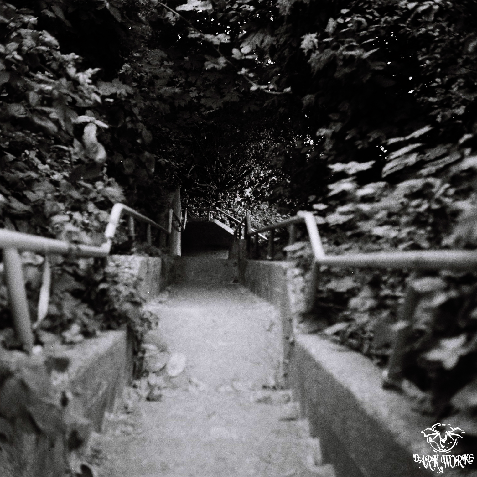 35mm 120mm film photography black and white stairway beach vancovuer