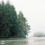 35mm - 120mm film - tofino - bc - photography - ocean - waves - fog - trees - island