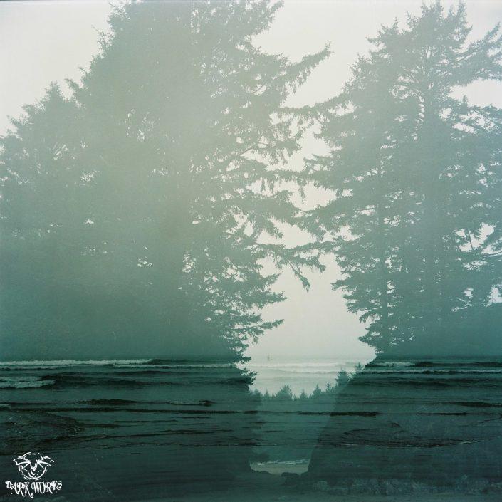 35mm - 120mm film - tofino - vancouver island - bc - beach - trees - ocean